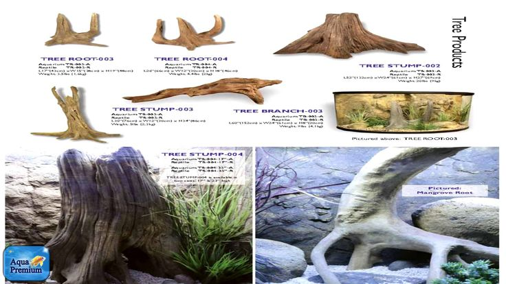 We have started decorating the new aquacube with universal rock driftwood-the most viewed in October