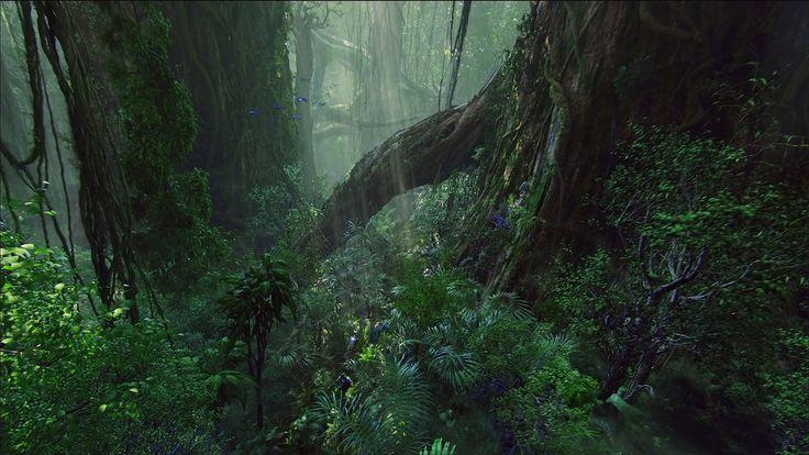 jungle sf world