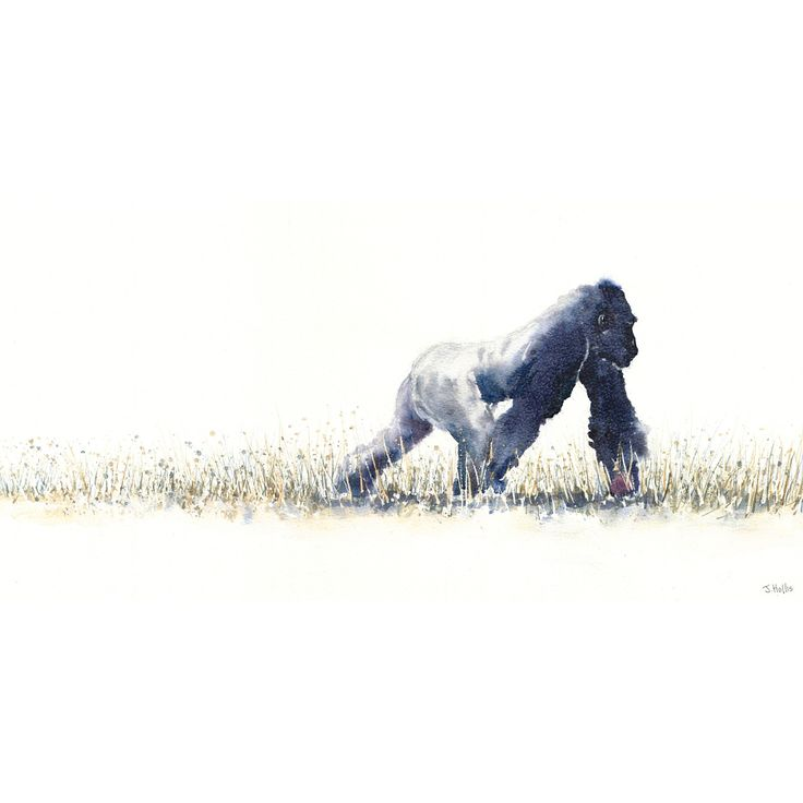 James Hollis Art | Gorilla painting original art wildlife watercolour animal art watercolor A3 size Africa African