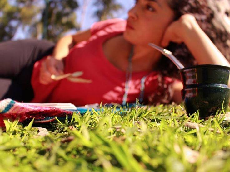 mateando en el parque (960×720)