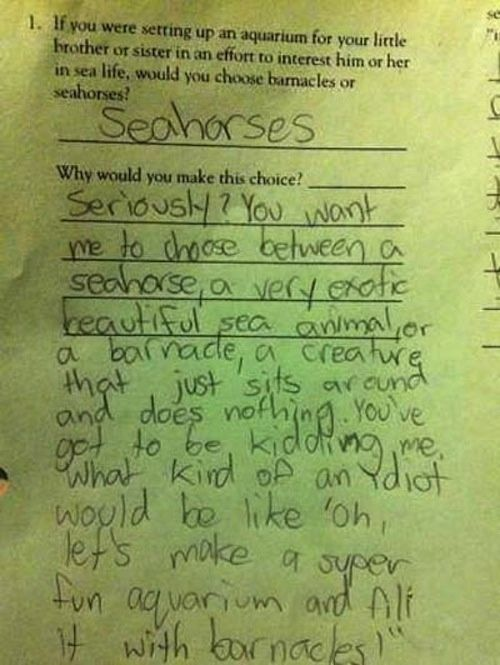 funny homework | smartass homework test answers | the funny things kids say & draw....