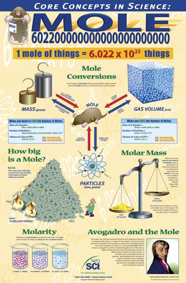 The mole concept is often quite difficult for students. This would make a good quick reference poster.