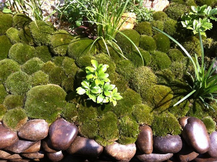 Moss cobbles at the Satoyama Life garden