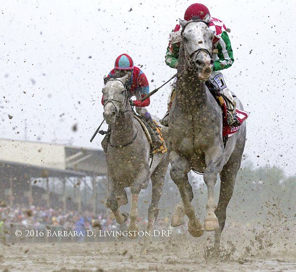 Lani and Cherry Wine #PreaknessStakes