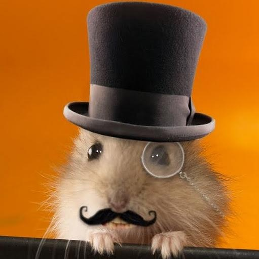 hamster in a top hat!