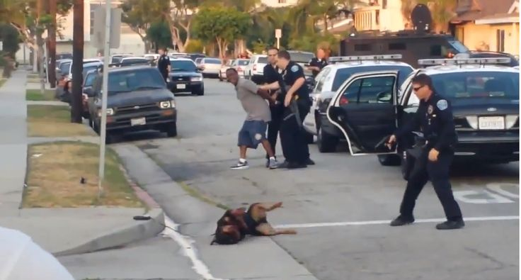Watch the video. Hawthorne Police shoot a man's dog in front of him, arrest him for video recording.  Cops are out of control. This is so wrong!!!