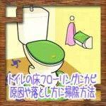 トイレの床フローリングにカビ!原因や取り方落とし方に掃除方法