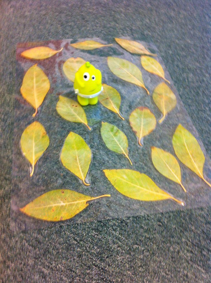 Dadda undrar om barnen kunde hitta löv som liknade Dadda.