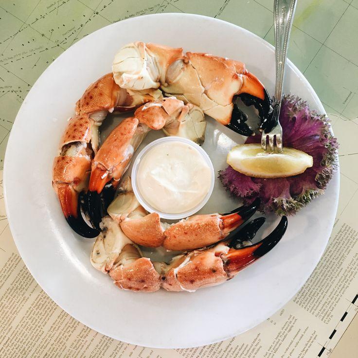 Enjoying florida stone crab claws easy meals food