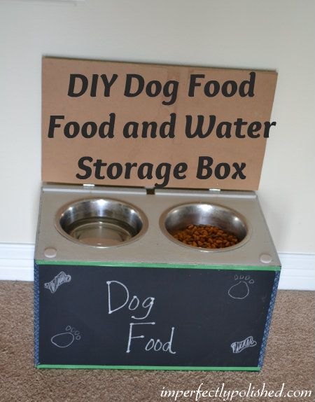 Dog Food And Water