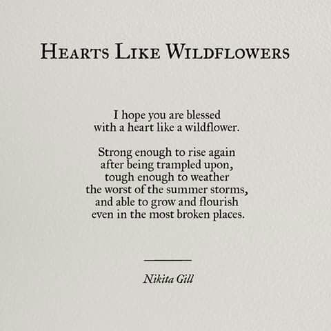 Hearts like wildflowers                                                                                                                                                                                 More