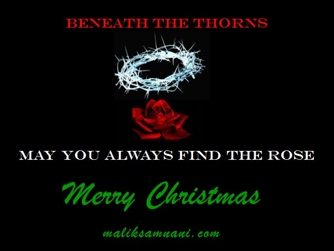 Beneath the thorns - may you always find the rose. Merry Christmas www.maliksamnani.com