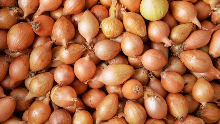 فوائد قشر البصل Herbal Medicine Herbalism Food