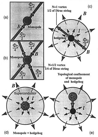 Hedgehogs and magnetic monopoles in superconductors. (a) 't Hooft–Polyakov magnetic monopole in a conventional superconductor. Magnetic flux of the monopole is concentrated in Abrikosov vortices because of the Meissner effect. (b) Magnetic monopole in a chiral superconductor with uniform l̂ vector. As distinct from the monopole inside conventional superconductors, the magnetic flux Φ0 of the monopole can be carried away by four half-quantum vortices. (c) Nexus: hedgehog with two Abrikosov…