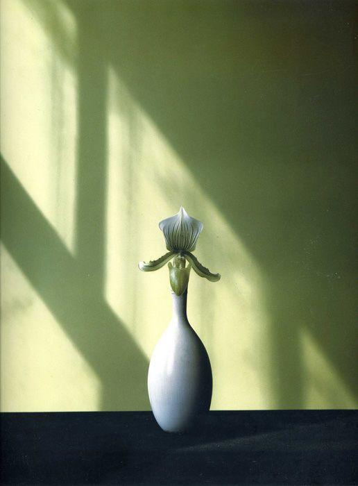 Robert Mapplethorpe - Flowers.