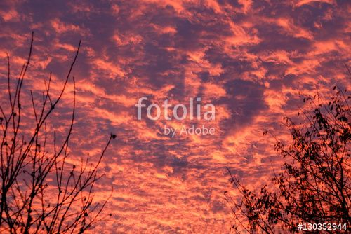 "Download the royalty-free photo ""gorgeous colorful sunset"" created by stillforstyle at the lowest price on Fotolia.com. Browse our cheap image bank online to find the perfect stock photo for your marketing projects!"