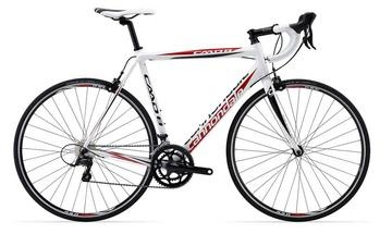 Cannondale CAAD8 7 Sora Compact - Kozy's Chicago Bike Shops | Chicago Bike Stores, Bicycles, Cycling, Bike Repair