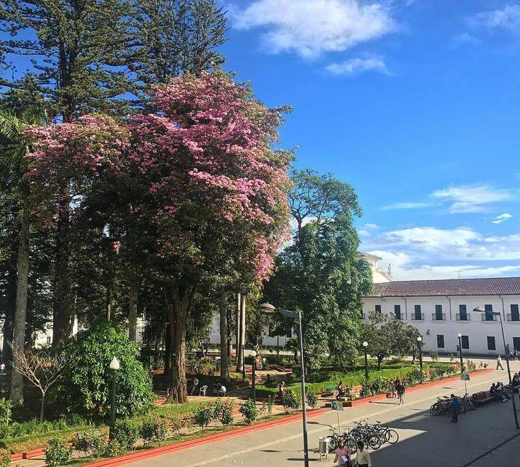Foto de @wfadrada  #PopayánCO #Popayán #Cauca #CaucaTerritorioDePaz #YoSoyCaucano #Sun