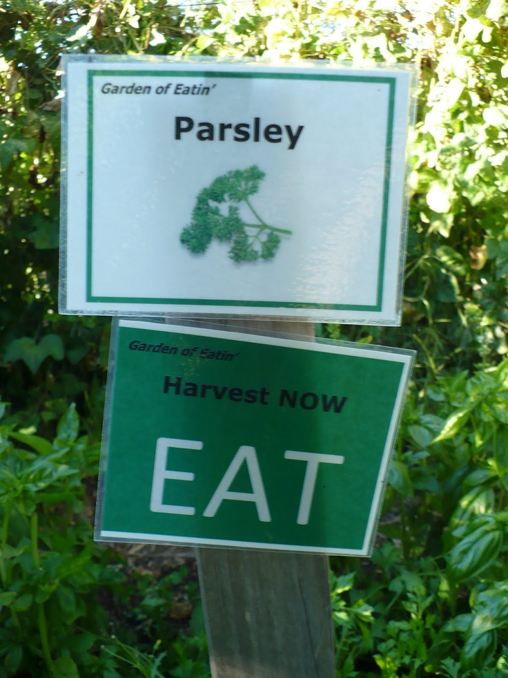 Harvest Sign On Barnwood For Fall Front Porch Decor: Garden Labels: A Collection Of Ideas To Try About