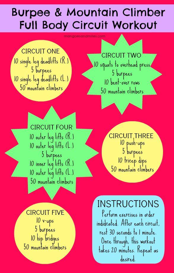 Full Body Circuit Training Workouts