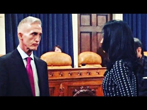Trey Gowdy Brutally Stomps Moronic Immigration Official - 'We Are A Nati...