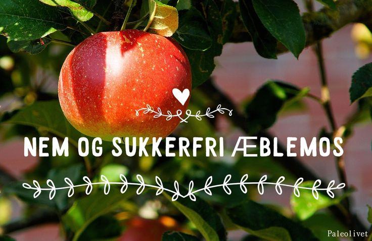 Paleolivet: Nem hjemmelavet sukkerfri æblemos opskrift + GRATIS æble -ebog