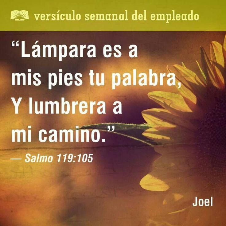 """""""Este verso me recuerda que Dios ofrece orientación a mi vida todos los días, en todas partes."""" – Joel    #Dios #guía #VersículoSemanal #versículo"""