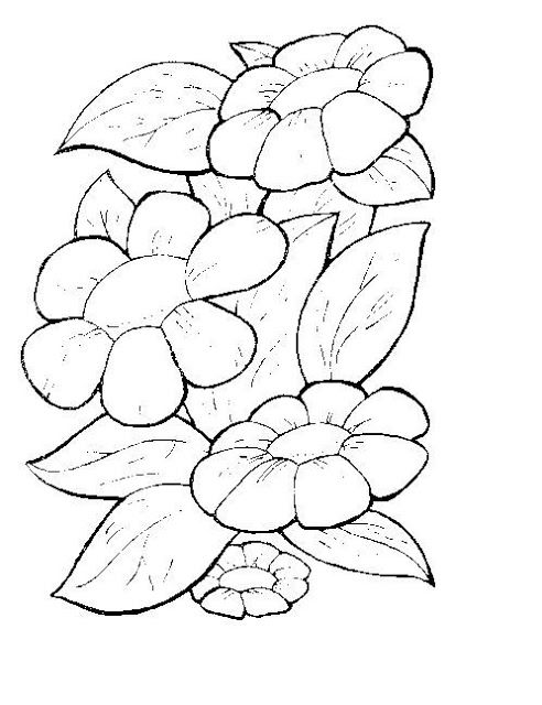 56 best DIBUJOS FLORES images on Pinterest  Drawings Crafts and