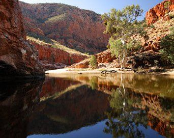 Orminston Gorge, Alice Springs Australia. we stopped near hear to make damper and billy tea.