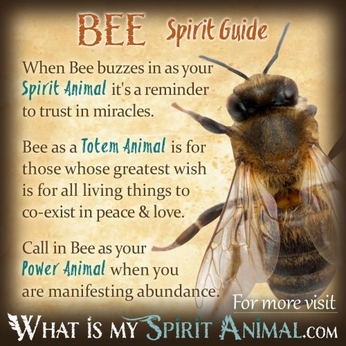 Bee Symbolism & Meaning -Pinned by The Mystic's Emporium on Etsy