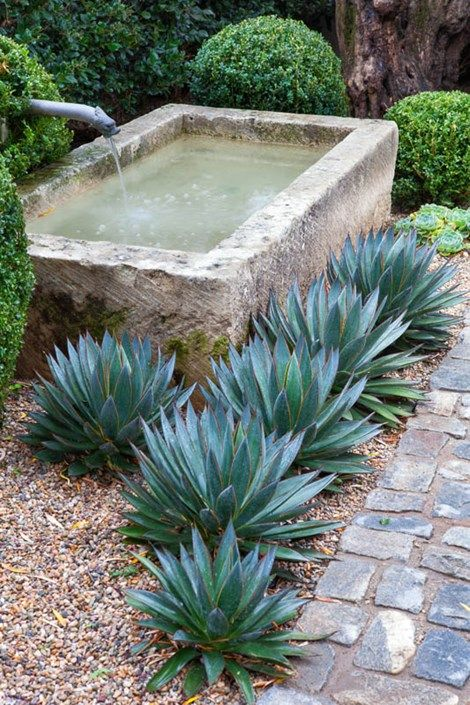 Simple contrasts spark garden interest: Scott Shrader edged a seventeenth-century stone water trough... with elegant, sheared boxwoods and 'Blue Glow' agaves. . . . the trough features a bronze spigot from La Maison Francaise Antiques, Inc that's a replica of an old French fountain spout. West Hollywood, CA