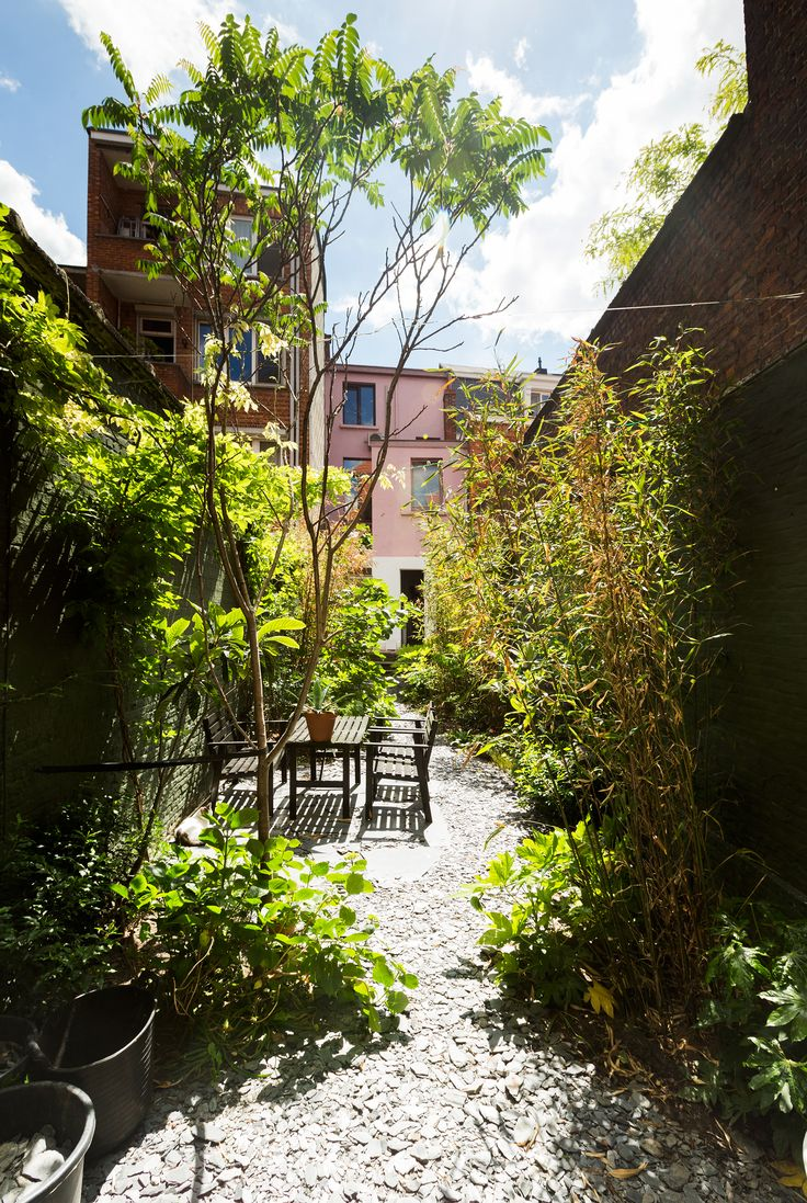 Lush urban jungle in Antwerp in the home of Magali & Bart, the duo behind Coffeeklatch.be. Photo by Bart Kiggen.
