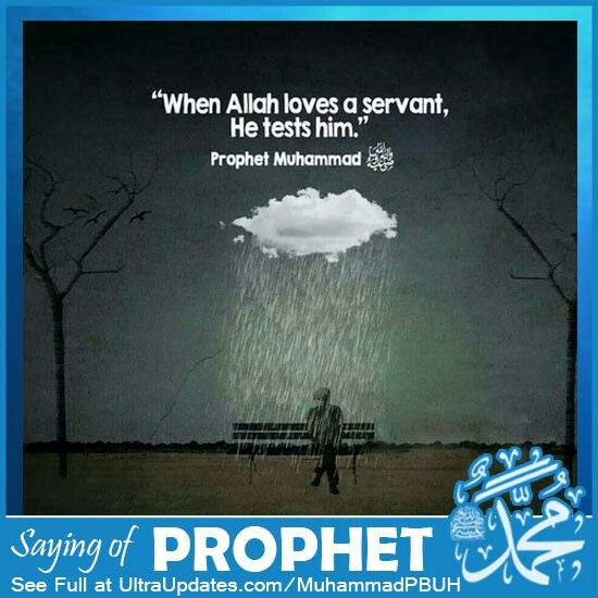 best my prophet my honour images allah islamic prophet muhammad spirituality islam beautiful