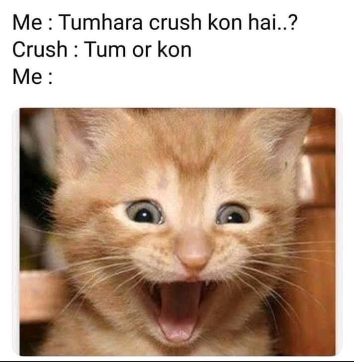 Pin By Sadia On Crush Free Mom Cat Memes Jokes In Hindi