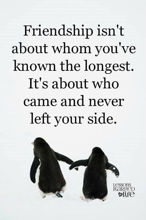 Friendship isn't about whom you've known the longest. It's about who came and never left your side.