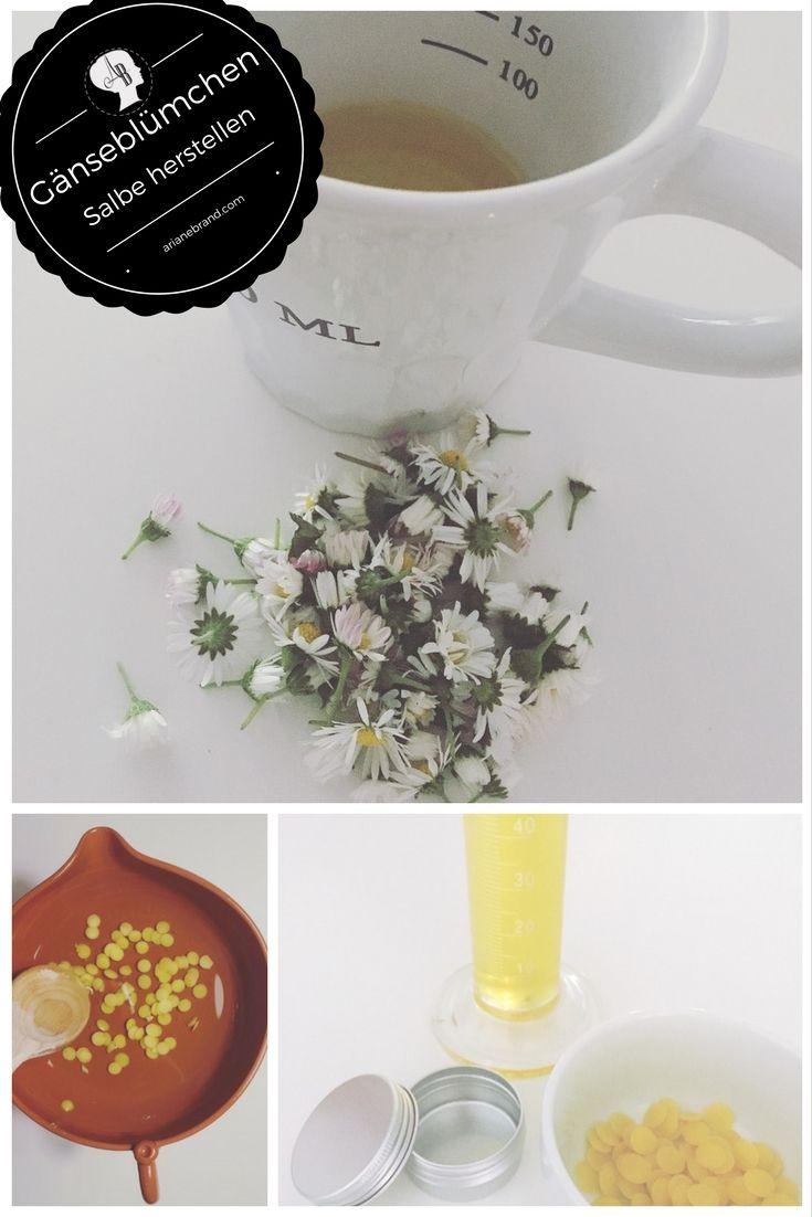 DIY: Gänseblümchensalbe selber herstellen / Schritt-für-Schritt Anleitung zur Salbenherstellung mit einem kalten Ölauszug warmen Ölauszug / Anwendungsgebiete der Gänseblümchensalbe / Naturkosmetik