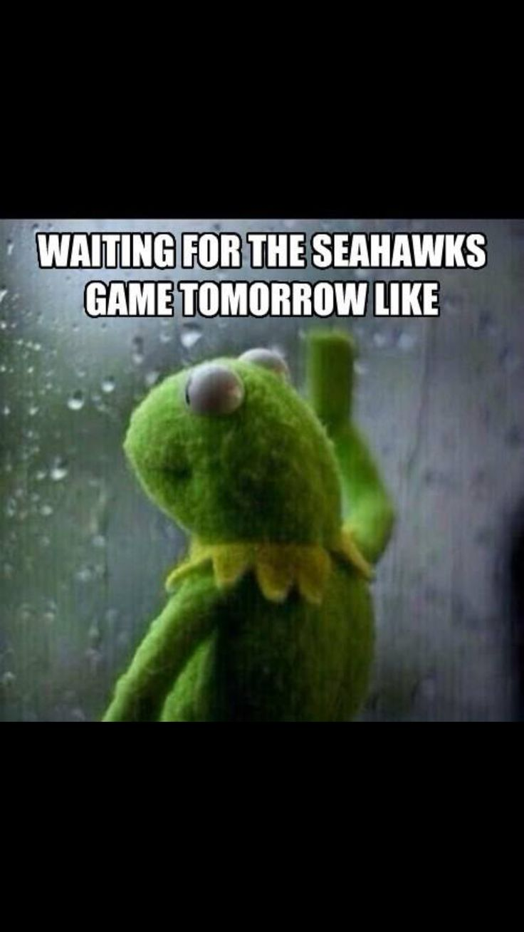 4211 best seattle seahawks memes images on pinterest seattle