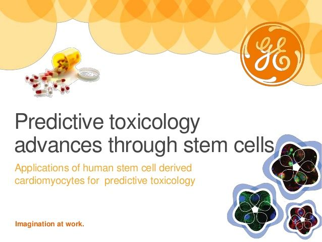 Predictive Toxicology Advances Through Stem Cells by GE Healthcare Life Sciences  via slideshare