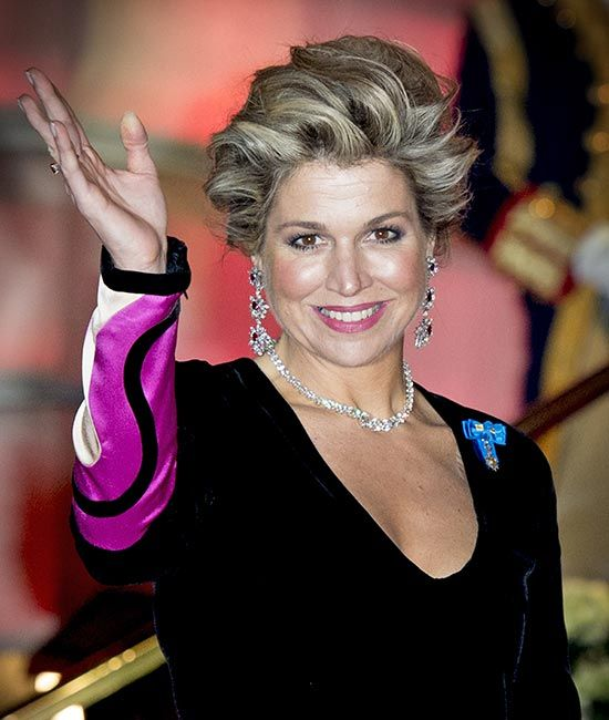 Queen Maxima of the Netherlands was dazzling at a state reception with husband King Willem-Alexander in Paris.