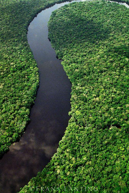 River winding through rainforest (aerial), D.R. Congo