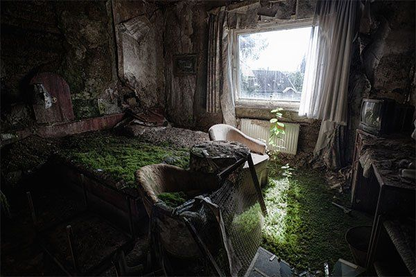 Nature takes over this crumbling hotel in Erfurt Germany. Description from iwantthatflight.com.au. I searched for this on bing.com/images
