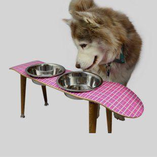 Skate alimentador de cão