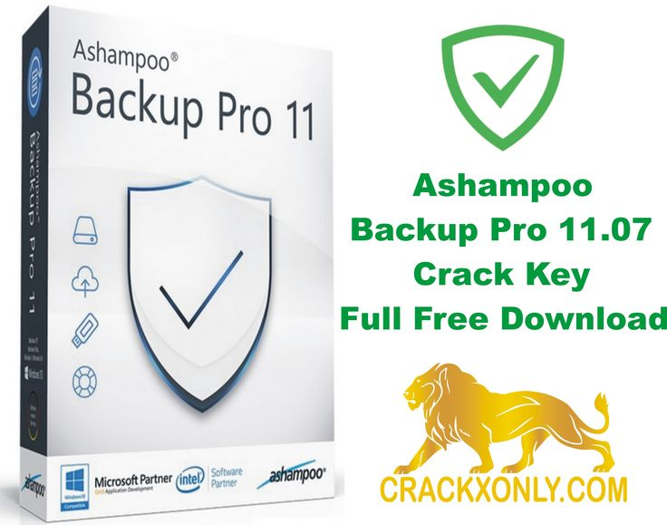 ashampoo backup pro 11 manual