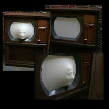 I'm thinking gutted tv, beef netting, styrofoam head?