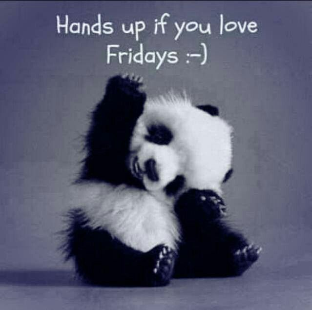 Hands up if you love friday quotes coffee friday panda tgif days of the week friday love