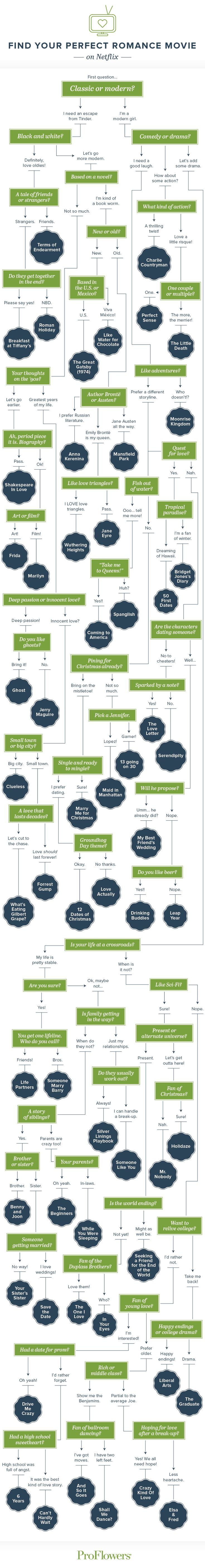 Can't device what movie to watch? Check out this flow chart to help you decide!