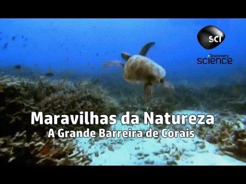 Maravilhas da Natureza - A Grande Barreira de Corais