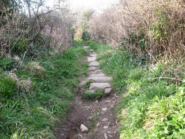 Uphill Walk