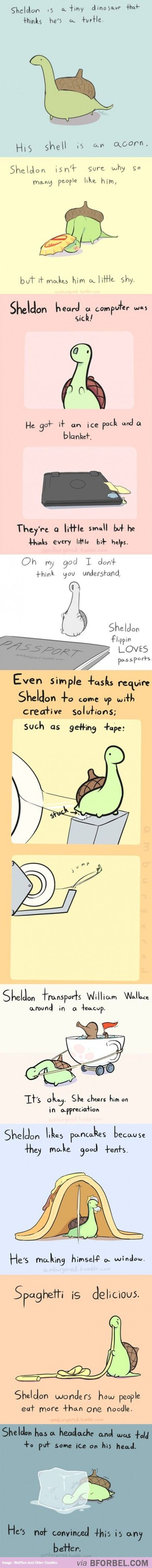 The Adventures Of Sheldon: The Confused Dinosaur…