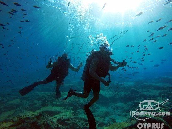 Photo of IPAdivers Diving Center